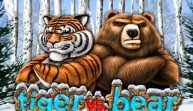 Tiger vs Bear (Тигр против медведя)